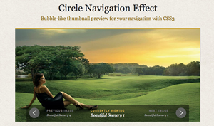 Circular navigation viewer